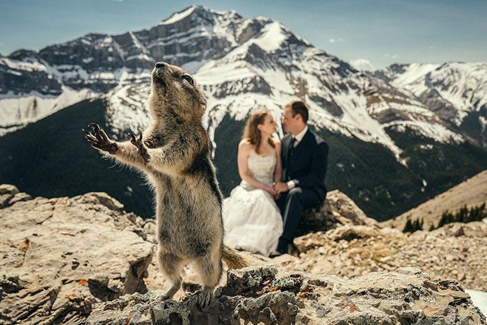 20 fotos de casamentos que foram invadidas e boas 01